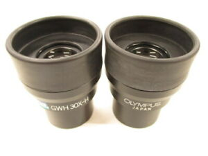 Olympus Gswh 30x h Stereomicroscope Stereo Microscope Eyepieces Lens Pair
