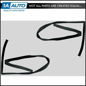 Front Upper Run Channel Seal Pair Set Of 2 For 97 03 Jeep Wrangler Truck New