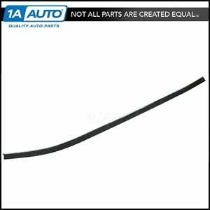 Window Sweep Weatherstrip Outer Rh Right Side For 69 75 Corvette Convertible