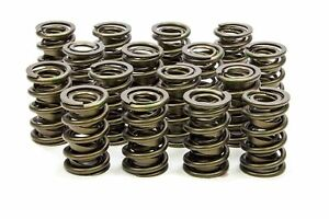 Crane Cams Dual Valve Spring Kit For Solid Lifter Custom Bbc Or Bbf