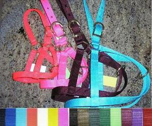 2 Calf Halters Double Ply Nylon Made In Usa
