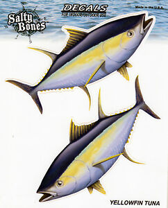 Yellowfin Tuna Decals Bumper Stickers Gifts Fishing Fish Right Left Facing Men