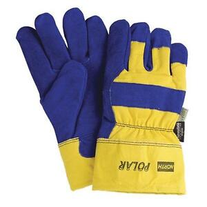 12 Pairs Polar Thinsulate Insulated Winter Work Gloves Size Large New