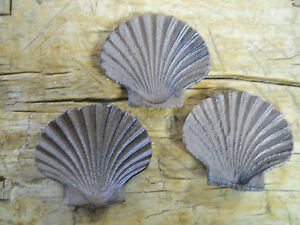 Set Of 3 Cast Iron Antique Style Nautical Sea Shell Soap Dish Clam Oyster Brown