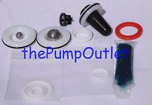 Quality Aftermarket Titan Pump Repair Packing 730 401 730401 440hp 440xc 440i