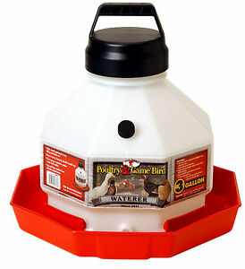 2 Pack Miller Little Giant 3 Gallon Plastic Usa Poultry Chicken Waterer Ppf3