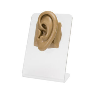 Realistic Adult sized Silicone Left Ear Display Tan Body Bit Version 2