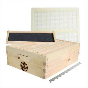 Beekeeping Beehive Super Kit Frames Foundations Queen Excluder