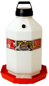 New Miller Little Giant 7 Gallon Plastic Usa Poultry Chicken Waterer Ppf7