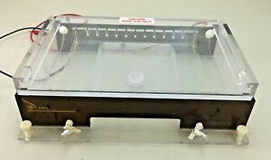 Thermo Owl A2 Wide Gel Horizontal Electrophoresis System