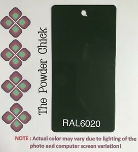 Ral 6020 49 52710 Chrome Green Powder Coating Paint 5lb Bag New