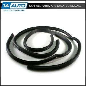 Roofrail Roof Rail Weatherstrip Seals Pair Set Of 2 For 68 70 Amc Javelin