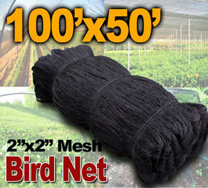 New 50ftx100ft Bird Netting Net Netting Bird Poultry Avaiary Game Pens 2 Hole