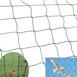 25 X 50 Bird Netting Net Netting For Bird Poultry Avaiary Game Pens 2 x2 469
