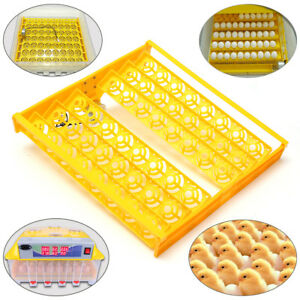 48 Position Incubator Turner Tray With Pcb Turning Motor 110v For Eggs Quail Usa