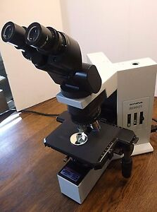 Olympus Bx40cyf2 Brightfield Microscope With Plan 4x 10x Cy 40x Bx40