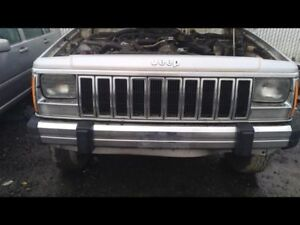 Grille Fits 84 85 Wagoneer 10243664