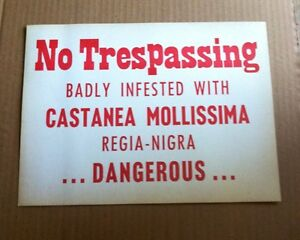 Antique Sign No Tresspassing Badly Infested With Castanea Mollissima Dangerous