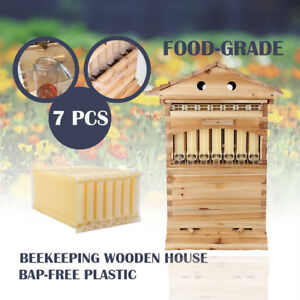 7pcs Auto Bee Honey Hive Frames beehive Beekeeping Wooden Cedarwood Brood House