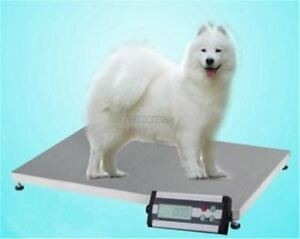 900 600 Floor Scales New Veterinary Animal Greyhound dog Scale Vet 150 Kg Ng