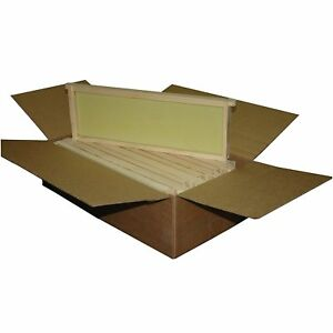 10pc Assembled Honey Bee Hive Frame Commercial Wax Natural Rite Cell Foundation