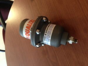 Wilden Equalizer 316 Ss Automatic Surge Dampener