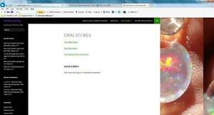 Online Business And Website For Sale