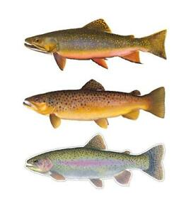 Trout Decals Stickers Brook Brown Rainbow All 3 Free Shipping Fly Fishing Flies