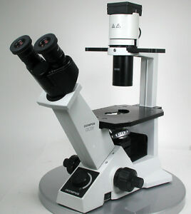 Olympus Ckx30 Made In Japan Trinocular Inverted Microscope 4x 10x 20x Japan 215