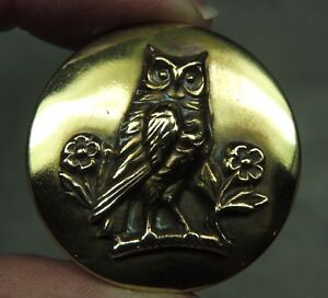Brass Picture Button Wise Owl Metal