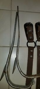 Buckingham Tree Pole Climbing Spikes Gaffs 4 93 L r straps Guards