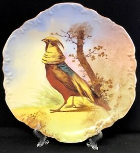 Limoges Antique 1906 Coronet Oriental Pheasant Bird 9 5 Plate Artist Signed Max