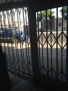 Criterion Metal Store Front Gate