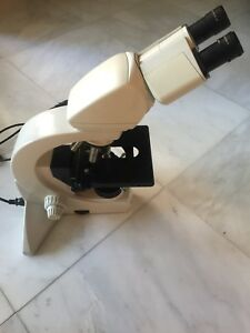 Leica Dmls Ergonomic Binocular Head Microscope Four C Plan Objectives