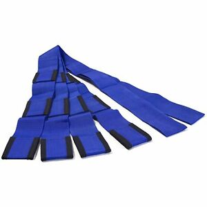 Blue 2 Person System Lifting Straps Heavy Duty Furniture Appliance Moving 800lb