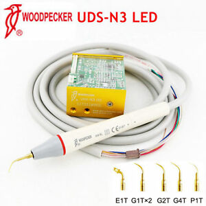 Original Woodpecker Led Uds n3 Dental Ultrasonic Piezo Built in Scaler Fit Ems