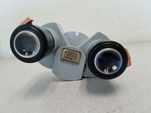 Carl Zeiss 12 5x Eyepieces With A F 125 Binocular Microscope Head