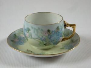 Vintage Floral Hand Painted Porcelain Cup Saucer Forget Me Not Flowers