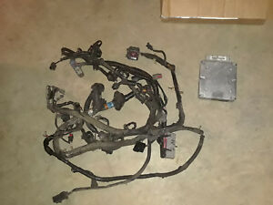 1994 1995 Ford Mustang 5 0l Engine Wiring Harness Gt40 Cobra 302 With Computer
