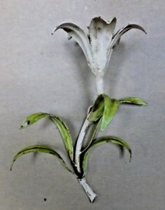 Mid Century Tole Metal Ware Lily Candle Holder Wall Sconce Italy Circa 1950 S