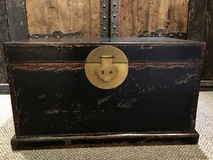Black Chinese Antique Camphor Wood Trunk 18 High