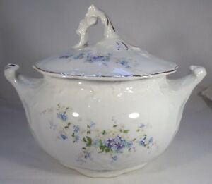 Antique Sugar Bowl Lid 6 Tall Porcelain Forget Me Not Flowers Grindley