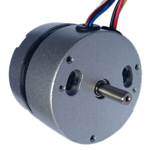 High Torque Brushless Motor Mini Dc Motor Dc 36v 4000 Rpm 3 Phase 0 055 N m