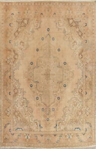 Antique Geometric Persian Oriental Hand Knotted 10x12 Beige Distressed Large Rug
