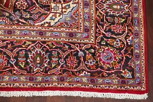 Clearance Vintage Traditional Floral Oriental Area Rug Hand Knotted Wool 8x12