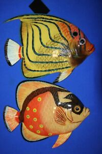 2 Tropical Seafood Restaurant Decor Fish Wall Hangings 12 F 83 F 84