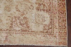 Antique Muted Evenly Worn Pile Distressed Area Rug Hand Knotted Near Square 8x9