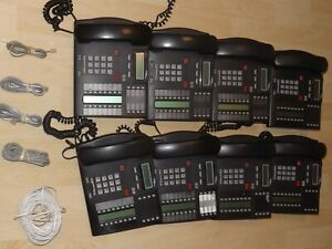 Lot Of 8 Nortel Norstar Networks T7316 Business Office Phone Telephone