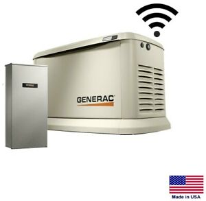Standby Generator Residential 20 Kw Ng Lp W 200 Amp Transfer Switch Se
