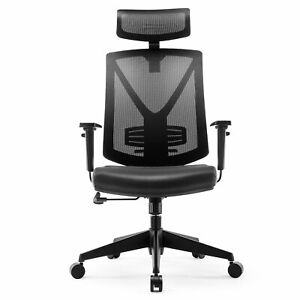 Intey Ergonomic Office Chair High Back Mesh Adjustable Headrest